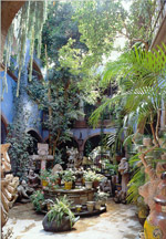 Description of San Miguel Allende